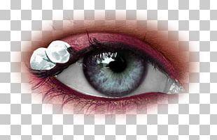 Human Eye Face Cosmetics Iris PNG