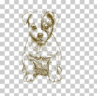 Jack Russell Terrier Drawing Photography PNG