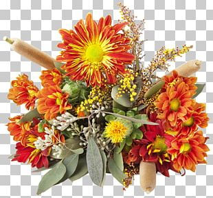 Transvaal Daisy Floral Design Cut Flowers Chrysanthemum Flower Bouquet PNG