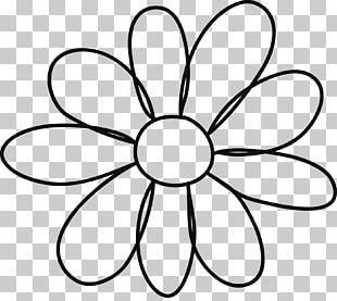 Petal Flower PNG