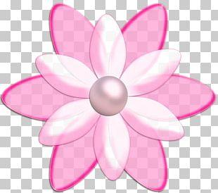 Petal Flower Information PNG