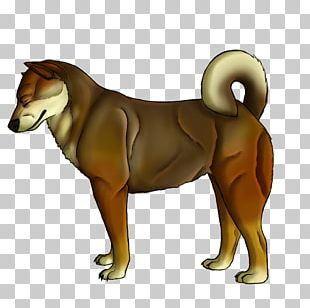 Dog Breed Lion Cat Puppy PNG