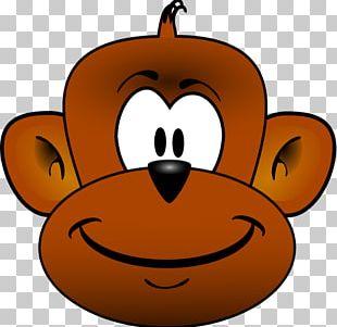 Chimpanzee Baboons Primate Monkey PNG