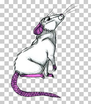 Whiskers Mouse Cat PNG