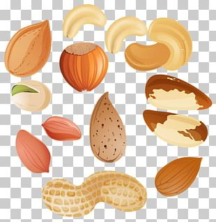 Mixed Nuts Tree Nut Allergy Peanut PNG