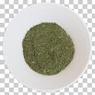 Herbal Tea Herbal Tea Spice Lemon Balm PNG