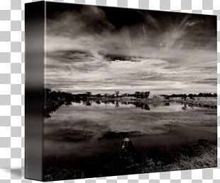 Monochrome Photography Stock Photography Frames PNG