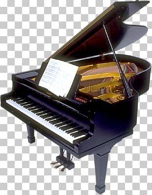 Piano Tuning Grand Piano Music String PNG