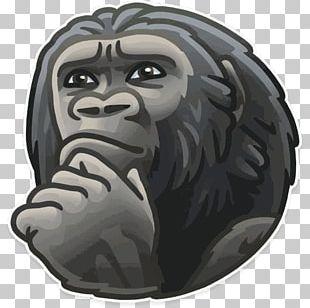 Telegram Sticker Advertising Decal Kik Messenger PNG
