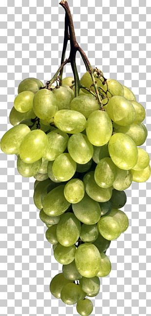 Grape Seed Oil Fruit Berry PNG