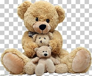 Teddy Bear Plush App For Kids Giant Panda PNG
