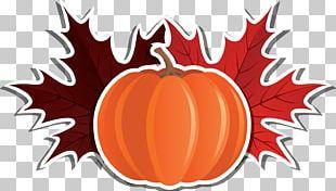 Pumpkin Wedding Invitation Thanksgiving Autumn Leaf Color PNG