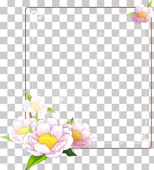 Frames Quran Molding Adobe Photoshop PNG
