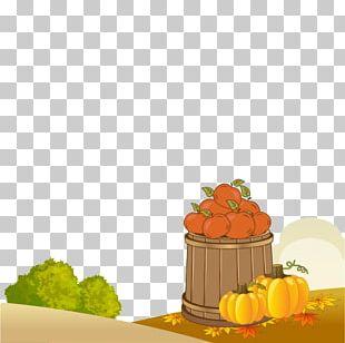 Cucurbita Pepo Pumpkin Autumn Harvest PNG