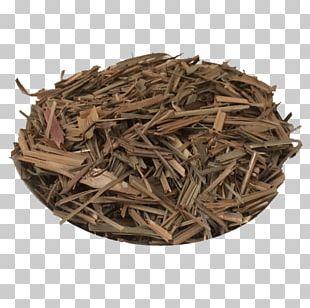 Nilgiri Tea Dianhong Golden Monkey Tea Wood PNG