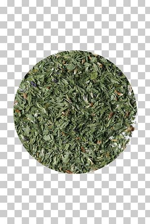 Tea Organic Food Alfalfa Red Clover Sencha PNG