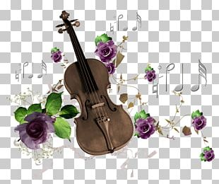 Musical Instrument Violin Musical Note Guitar PNG