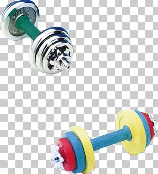 Dumbbell Physical Fitness Bodybuilding PNG
