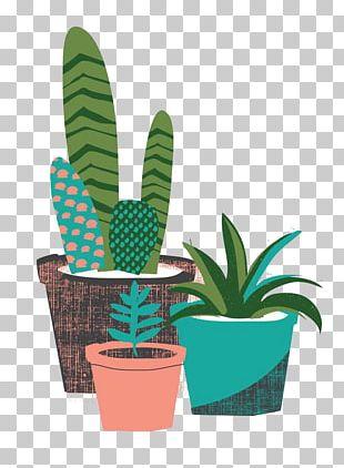 The Cactus Garden Cactaceae Succulent Plant Desert PNG