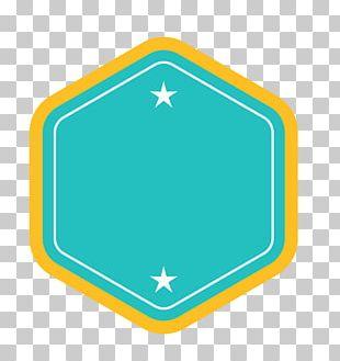 Green Star Euclidean Vecteur PNG