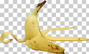 Banana Peel Fruit Banana Peel Food PNG