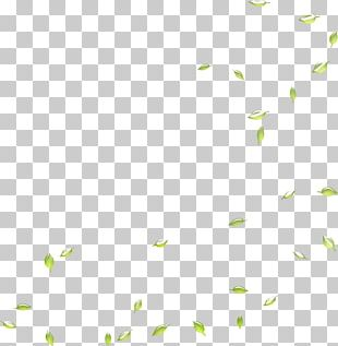 Google S Search Engine Leaf Deciduous PNG