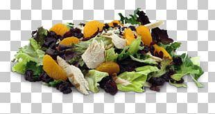Egg Salad Chicken Salad Vegetarian Cuisine Tuna Salad PNG