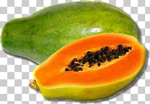 Papaya Tropical Fruit Food Mango PNG