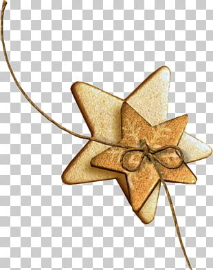 Star Christmas Ornament Photography PNG