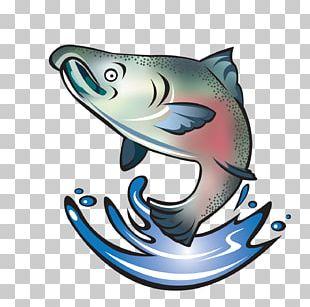 Coho Salmon Chinook Salmon Sockeye Salmon Fish PNG