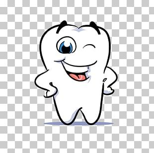 Human Tooth Dentistry Smile PNG