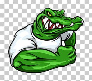 Crocodile Alligator Decal Sticker PNG