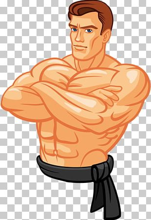 Muscle Illustration PNG