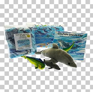 Marine Biology Ecosystem Marine Mammal Fauna Plastic PNG