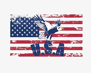 American Flag With Animals PNG