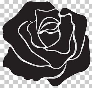 T-shirt Black Rose Garden Roses PNG