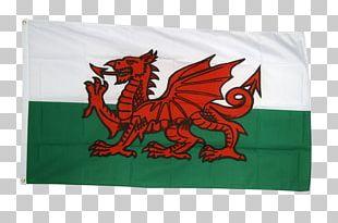 St Davids Saint David's Day Flag Of Saint David Flag Of Wales Cardiff PNG
