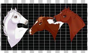 Solar Panels MC4 Connector Regulator Mustang Stallion PNG