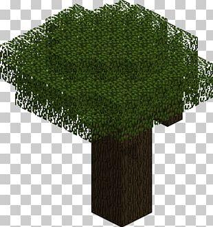 Minecraft Tree Oak Mod Mob PNG