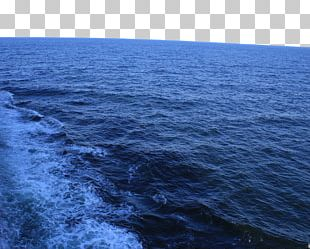 Wind Wave Sea Level PNG