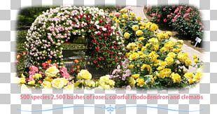 Ashikaga Flower Park Floral Design Rose Rhododendron PNG