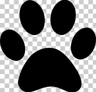 Paw PNG