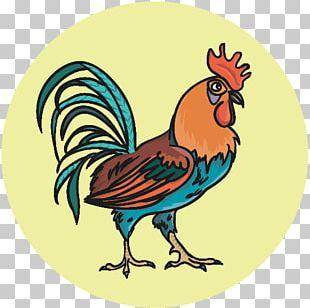 Rooster Beak Chicken As Food PNG