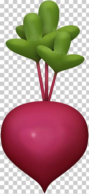 Veggie Burger Vegetable Beetroot Food PNG
