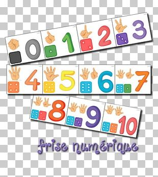 Kindergarten Elementary School Montessori Education Game PNG
