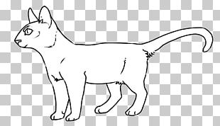 Whiskers Cat Line Art Red Fox Cheetah PNG