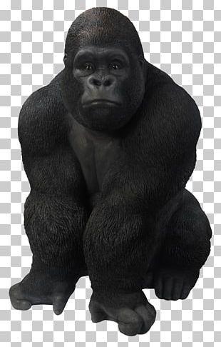 Gorilla Ape Goat Primate PNG