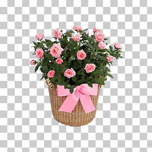 Garden Roses Flower Bouquet Cut Flowers PNG
