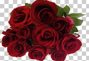 Stock Photography Rose Flower Bouquet PNG