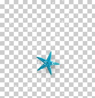 Starfish Turquoise Body Jewellery PNG